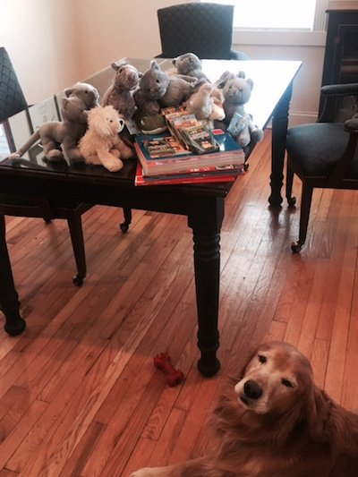 Books and Stuffed Animals