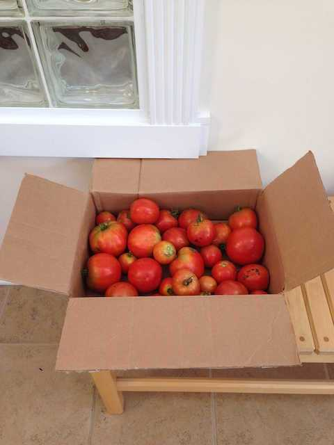 Box with Tomatoes
